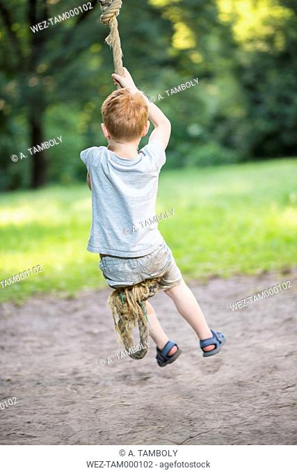 Back view of little boy swinging with rope in a park
