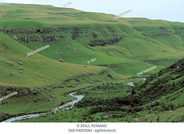 South Africa - Ukhahlamba Drakensberg National Park (UNESCO World Heritage List, 2000). Mountainous landscape around Giant's Castle
