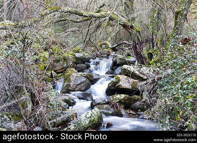 Stove stream in the Sierra de Guadarrama. Robledondo. Madrid. Spain. Europe