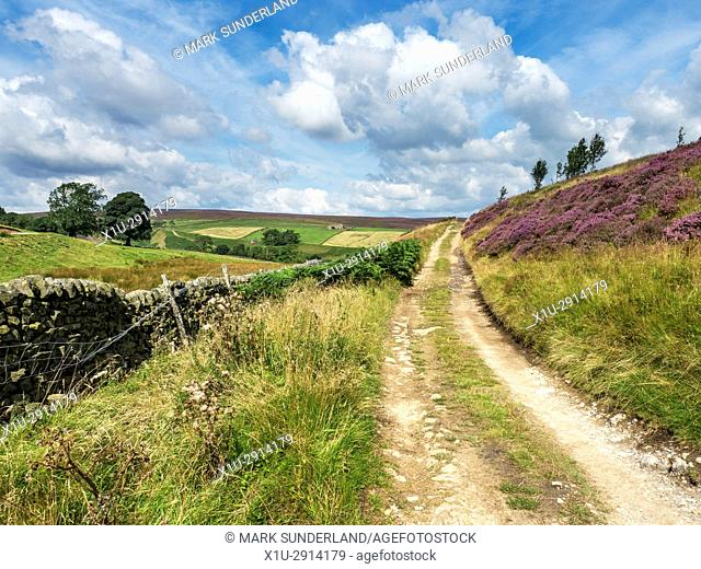 The Nidderdale Way Long Distance Path near Providence Mine Pateley Bridge Nidderdale AONB Yorkshire England