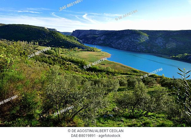 Olive trees and vegetation along the Krka River, near Roski Slap, Krka National Park, Croatia