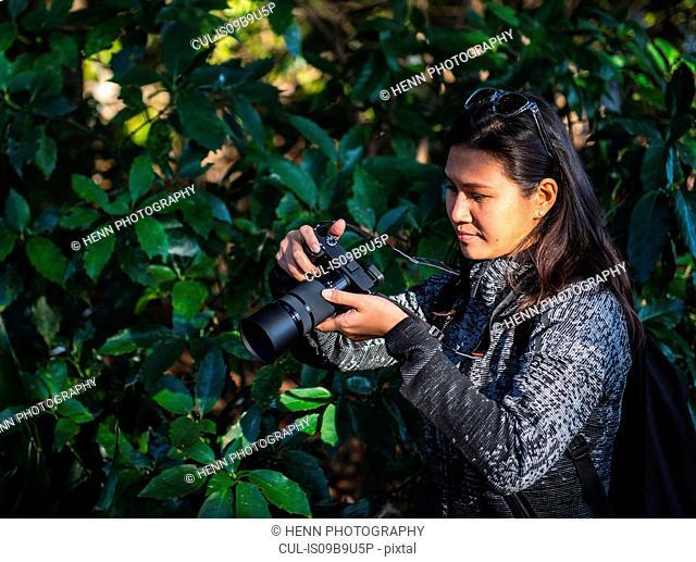 Woman taking pictures with mirrorless digital camera, Shinjuku Gyoen National Garden, Tokyo