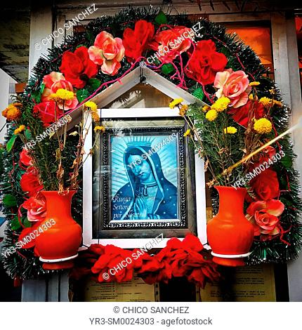 An altar to Our Lady of Guadalupe decorates a street in Coyoacan, Mexico City, Mexico