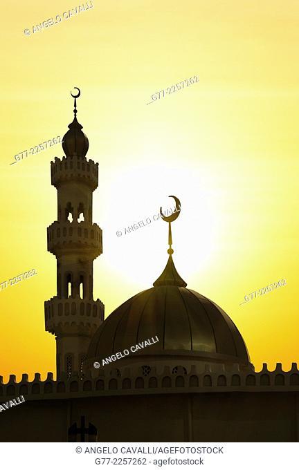Mosque at sunset, Abu Dhabi, UAE