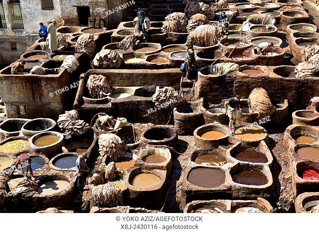 Morocco, Fes, Chouara tannery