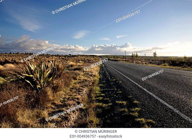 Strasse im Tongariro Nationalpark