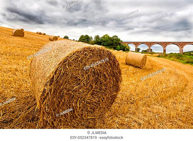 Haystack in foreground, Leaderfoot Viaduct in background
