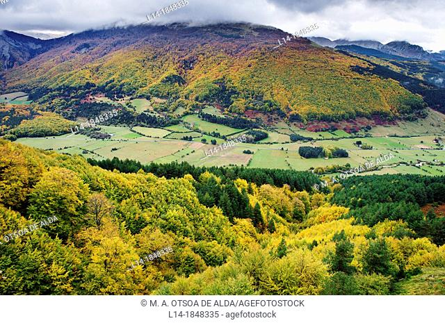 Belagua valley, Navarre, Spain