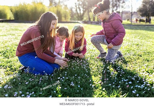 Four girls on a meadow picking daisies