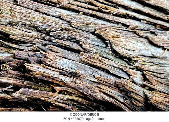 alte Holzstruktur, old wooden structure