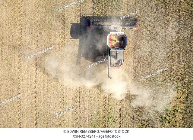 Aerial of combine harvester driving through soybean (Glycine max) field, Laytonsville Maryland