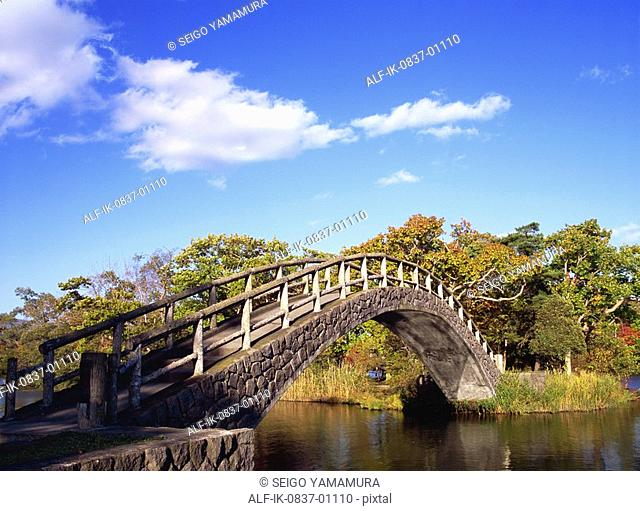 Bridge over river with plants in countryside
