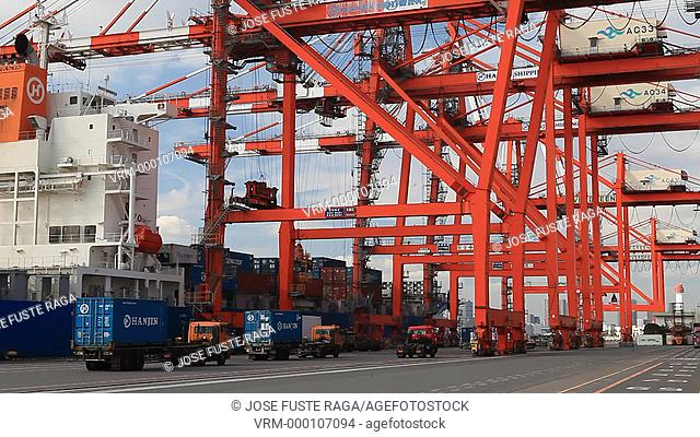 Japan-Tokyo City-Odaiba District-Aomi Wharf-unloading ship