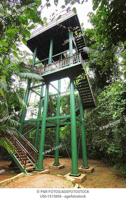 Viewpoint of Parque Ambiental Chico Mendes, Rio Branco, Acre