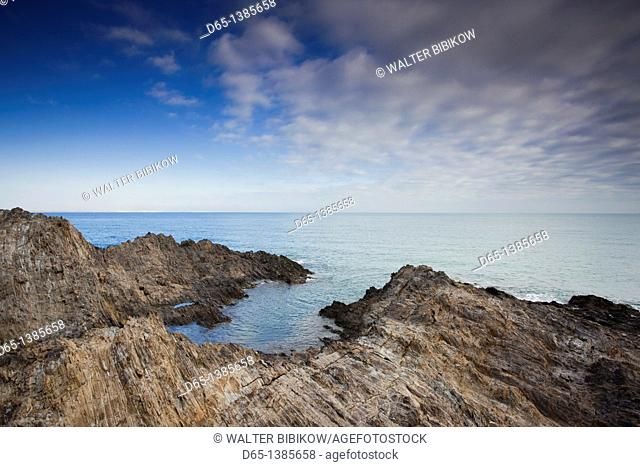 France, Languedoc-Roussillon, Pyrennes-Orientales Department, Vermillion Coast Area, Collioure, harbor view