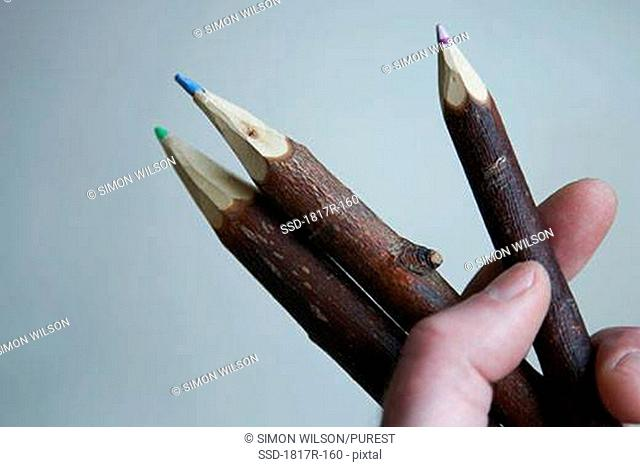 Hand holding twig shaped pencil crayons
