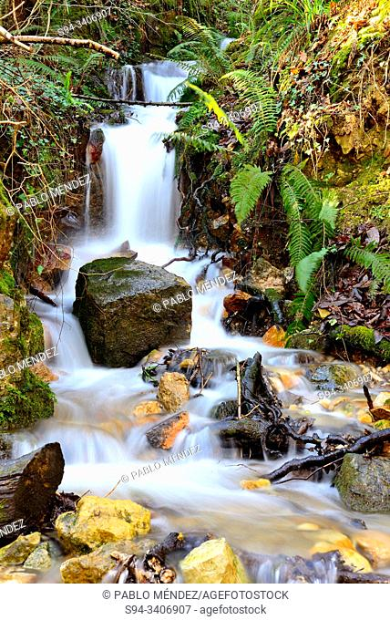 Waterfall. Green Path of Trubia river or Bear's Path, between Tuñon and San Andres, Asturias, Spain