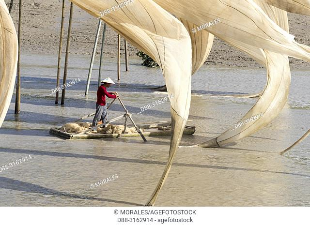 China, Fujiang Province, Xiapu County, Drying of the sails of boats with the wind