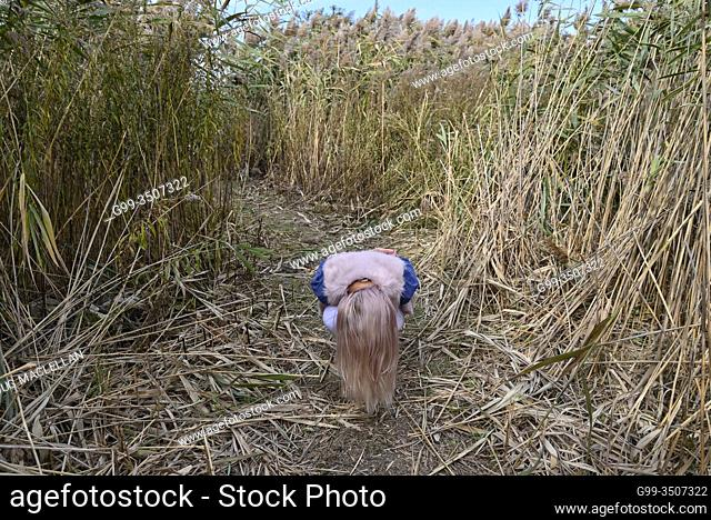 A woman with long hair moves quickly from a crouching position on a pathway in a tall grass field in early autumn in Canada