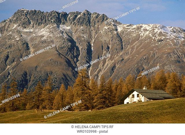 Switzerland, Engadina, Pontresina, Valley in autumn