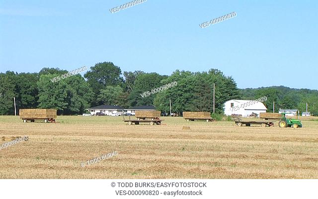 Farmer square baling hay with accumulator