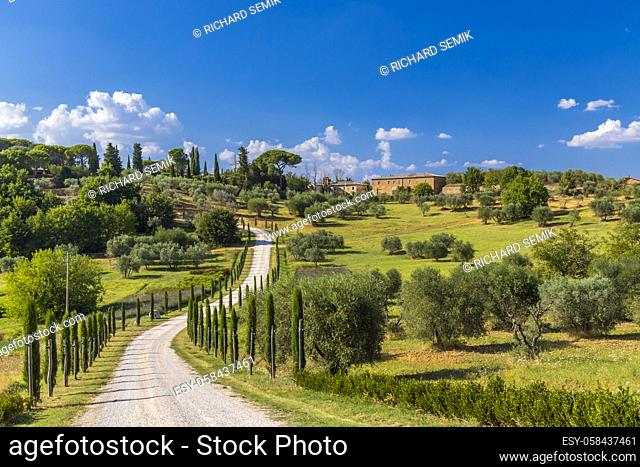 Typical Tuscan landscape near Montepulciano and Monticchielo, Italy