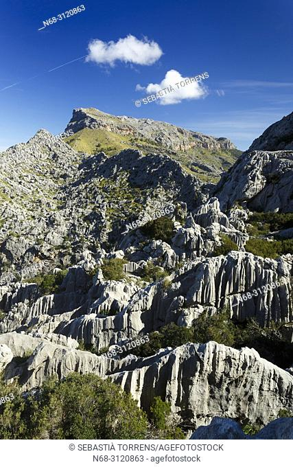 Serra de Tramuntana, Escorca, Majorca, Balearic Islands, Spain