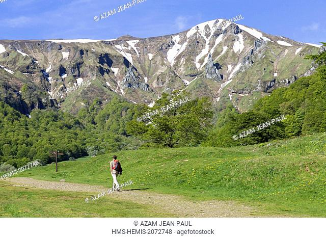 France, Puy de Dome, Parc naturel régional des volcans d'Auvergne, Sancy massif, Chaudefour valley, Puy Ferrand