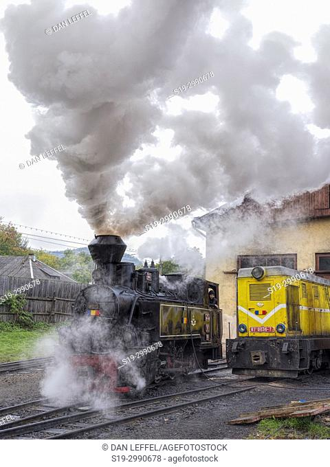 Carpathian Forest Steam Train. Romania