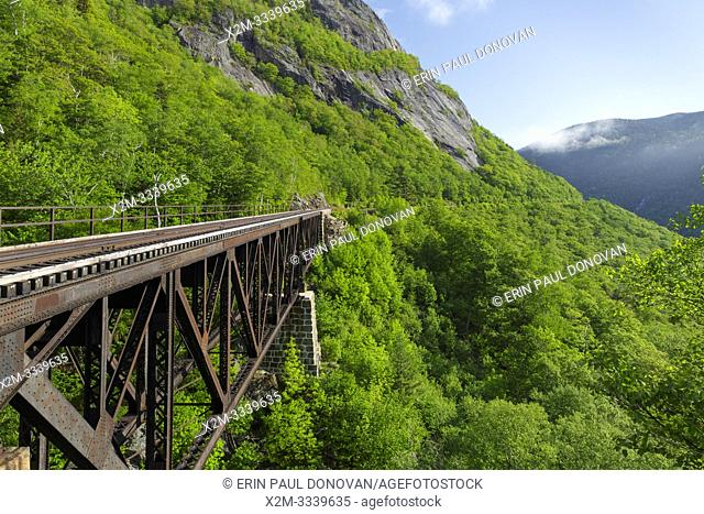 Willey Brook Trestle along the old Maine Central Railroad in Hart's Location, New Hampshire. This trestle is within Crawford Notch State Park