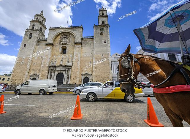 San Idelfonso cathedral, Colonial church in Merida, Yucatan (Mexico, Central America)