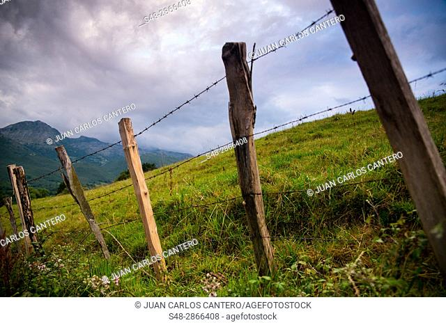 Rural landscape, Cantabria, Northern Spain