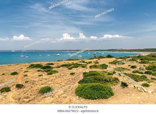 Gallipoli, province of Lecce, Salento, Apulia, Italy. The coast of Punta Pizzo