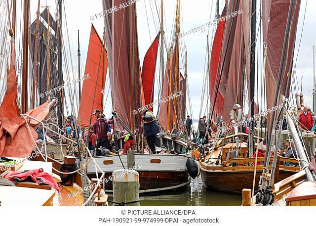 21 September 2019, Mecklenburg-Western Pomerania, Ahrenshoop: In the Bodden harbour the Zeesenboote are ready for the start of the 26th Althäger Fischerregatta
