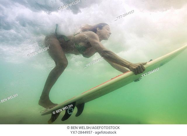 Woman with surf board under a wave