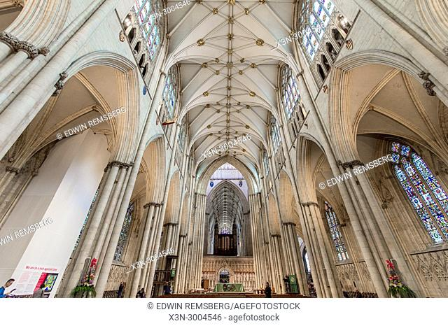 Low angle view of ceiling of Nave in York Minster and pipe organ, York, Yorkshire, United Kingdom
