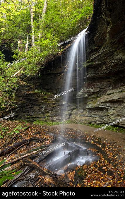 Little Moore Cove Falls - Pisgah National Forest, Brevard, North Carolina, USA