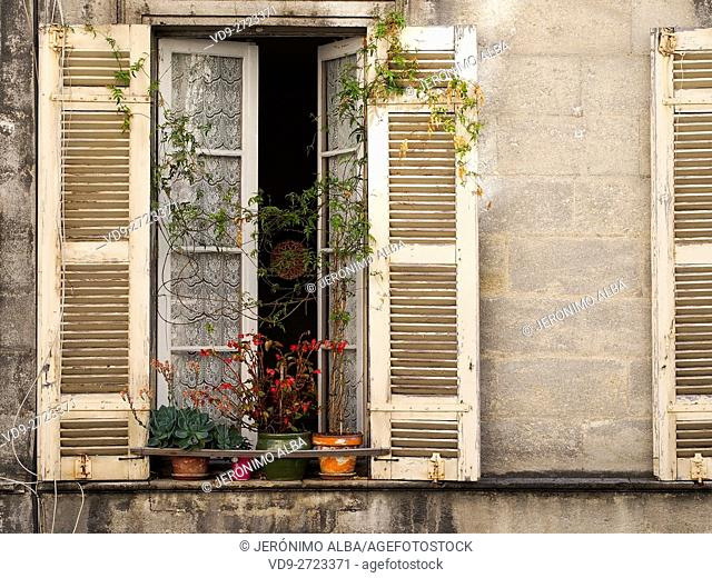 Window on the facade of a building, old town Bordeaux, Gironde. Aquitaine France Europe