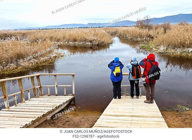 Tablas de Daimiel National Park, Ciudad Real, Castila La Mancha, Spain