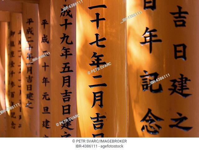 Close-up of torii gates, Fushimi Inari-taisha Shrine, Kyoto, Japan