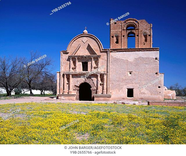 USA, Arizona, Tumacacori National Historical Park, Remains of mission church San Jose de Tumacacori, originally built in early 1800's, and spring wildflowers