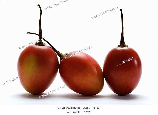 photography studio,tamarillo fruit,tropical fruit,cifomandra,location girona,catalonia,spain,europe,