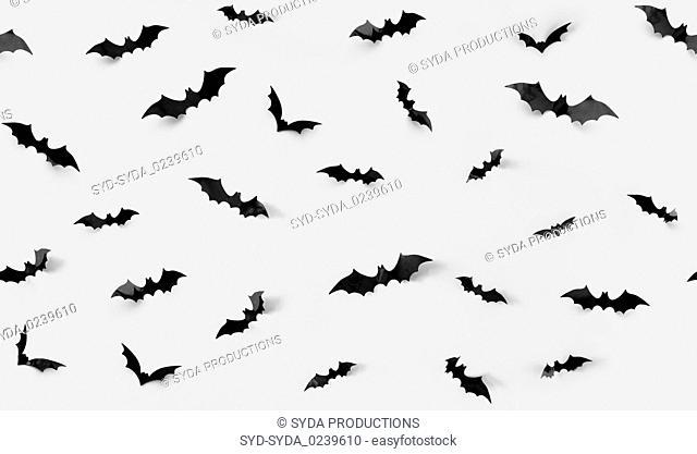 seamless pattern with halloween bats