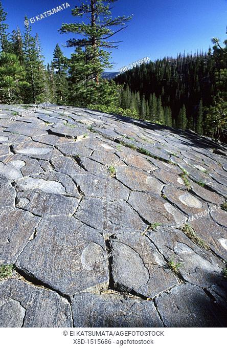 Glacially polished basalt columns, Devil's Postpile National Monument, California