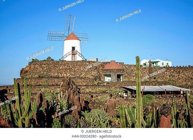 Jardin de Cactus , Cactus Garden, Guatiza, Lanzarote, Canary Islands, Spain