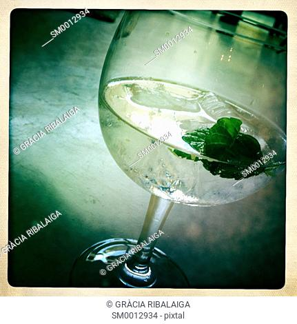 Gin and Tonic in a glass with a mint leaf