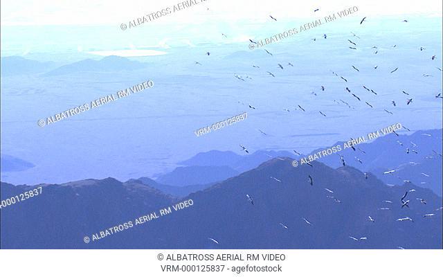 Aerial footage of migrating Storks; Eilat mountains; Israel
