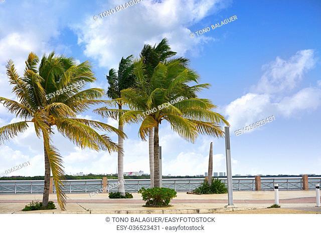 Cancun Mexico lagoon and Hotel zone hotelera Nichupte