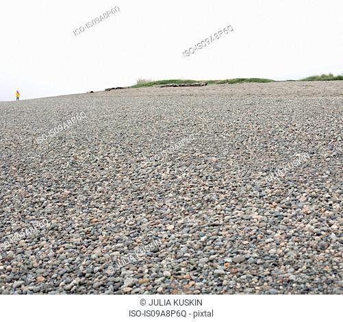 Pebbled landscape