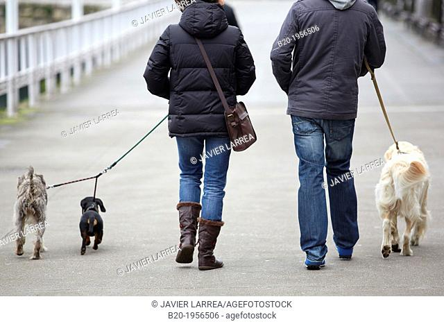 Couple walking dogs, Gijón, Asturias, Spain